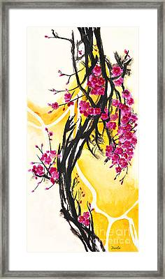 Plum Blossoms Framed Print by Antony Galbraith