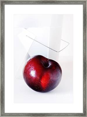 Plum Framed Print by HD Connelly