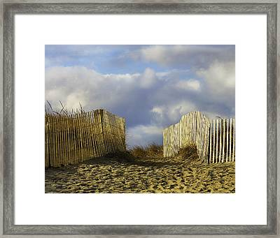 Framed Print featuring the photograph Plum Island Fence by Betty Denise