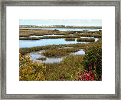 Plum Island Marshes In Autumn 2 Framed Print