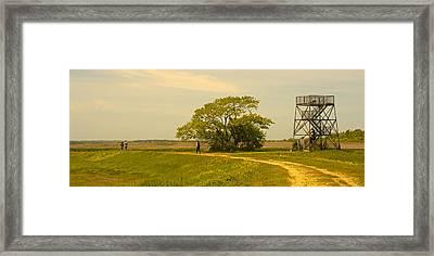 Plum Island Summer Afternoon Framed Print