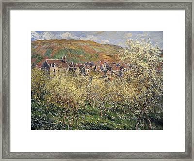 Plum Trees In Blossom At Vetheuil Framed Print