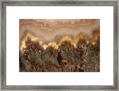 Plume Agate Shape And Form Framed Print by Leland D Howard