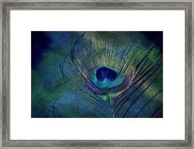 Plume Framed Print