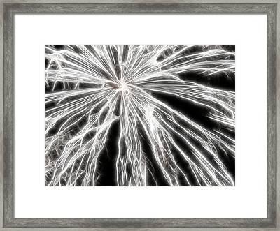 Plume Framed Print by Thomas  MacPherson Jr