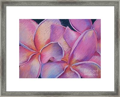 Plumeria 2 Framed Print