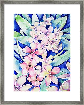 Plumerias Of Maui Framed Print