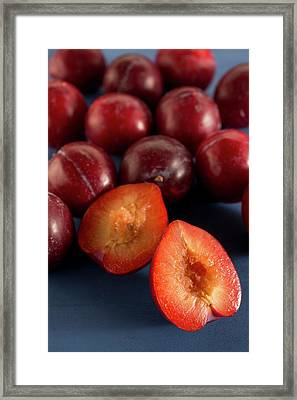 Plums Framed Print by Aberration Films Ltd
