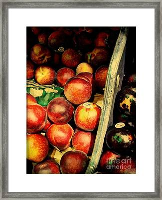Plums And Nectarines Framed Print by Miriam Danar
