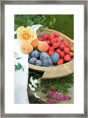 Plums, Strawberries And Apricots In Wooden Bowl Framed Print