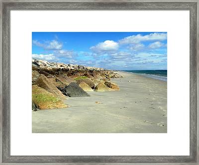 Plymouth Beach In Massachusetts Framed Print by Janice Drew