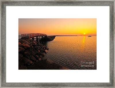 Plymouth Harbor Jetty Framed Print by Catherine Reusch Daley