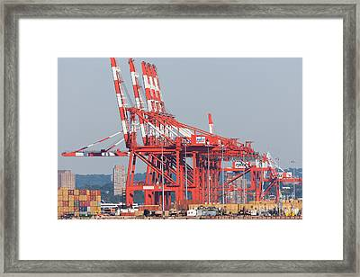 Pnct Facility In Port Newark-elizabeth Marine Terminal I Framed Print by Clarence Holmes