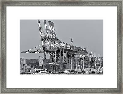 Pnct Facility In Port Newark-elizabeth Marine Terminal II Framed Print by Clarence Holmes