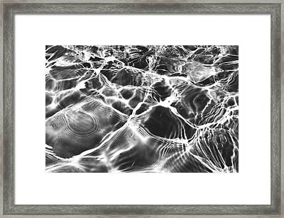 Po Framed Print by Claudia Avila