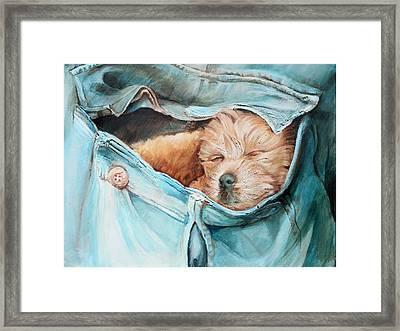 Pocket Puppy Framed Print by Vanessa Bates