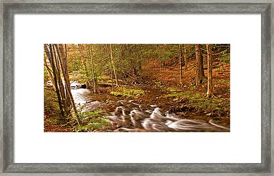 Pocono Mountain Stream Pennsylvania Framed Print by A Gurmankin