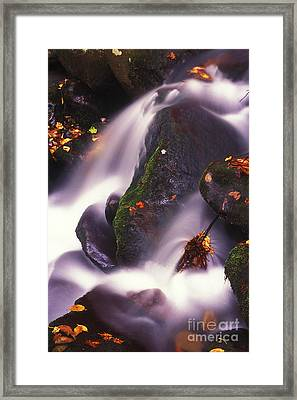 Poetry In Motion - 290 Framed Print by Paul W Faust -  Impressions of Light