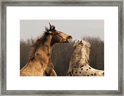 Poetry In Motion Framed Print by Carey Dils