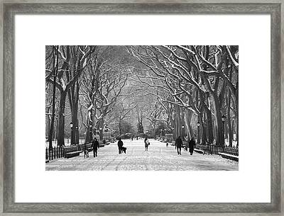 Framed Print featuring the photograph New York City - Poets Walk Winter by Dave Beckerman