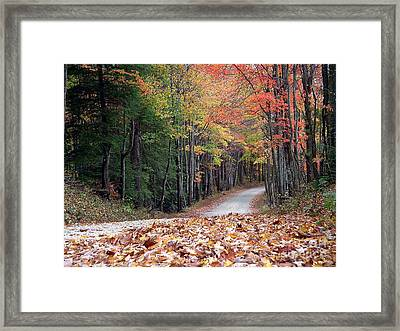 Poga Autumn Framed Print