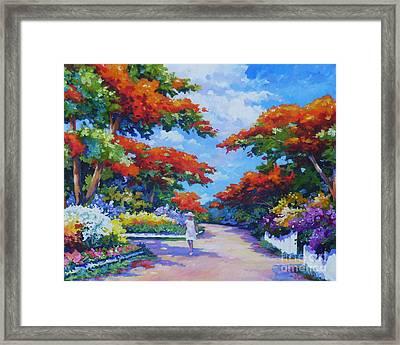 Poinciana Paradise  20x16 Framed Print by John Clark