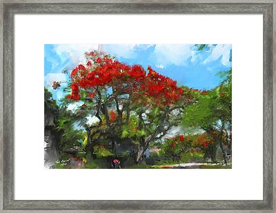 Framed Print featuring the painting Poinciana Trees Of Coral Gables by Ted Azriel