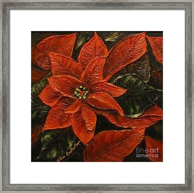 Poinsettia 2 Framed Print