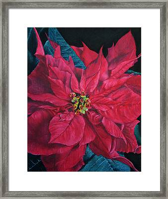 Poinsettia II Painting Framed Print by Marna Edwards Flavell