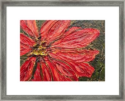 Poinsettia Sgraffito  Framed Print by Maria Soto Robbins