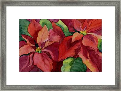 Poinsettia Framed Print by Vikki Bouffard