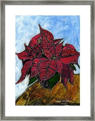Poinsettias Framed Print by Robert Goudreau