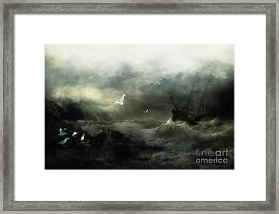Point Danger Framed Print by Shanina Conway