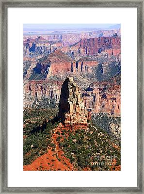 Point Imperial - North Rim Grand Canyon Framed Print