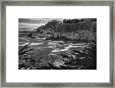 Framed Print featuring the photograph Point Lobo  by Ron White