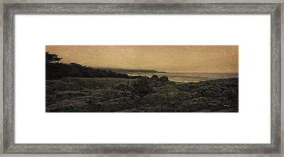Point Lobos - An Antique Take Framed Print by Angela A Stanton