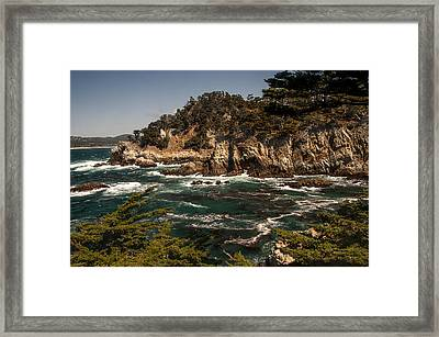 Framed Print featuring the photograph Point Lobos by Lee Kirchhevel