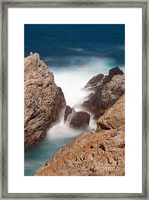Point Lobos Number Two Framed Print by Catherine Lau