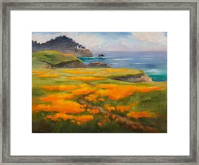 Point Lobos Poppies Framed Print by Karin  Leonard