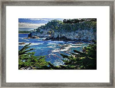 Point Lobos Framed Print by Ron White