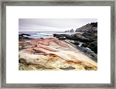 Point Lobos State Park Framed Print