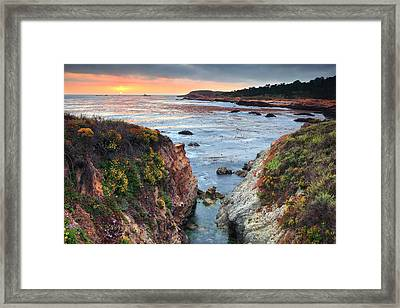 Point Lobos State Reserve 3 Framed Print by Emmanuel Panagiotakis