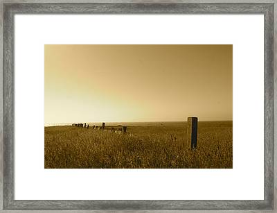 Point Reyes Field Framed Print by Colleen Renshaw