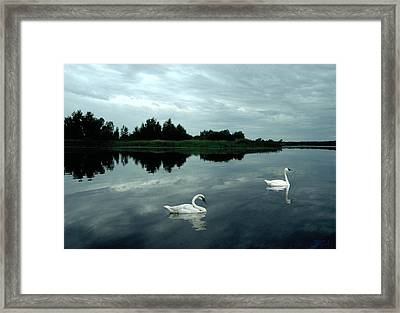 Point Serenity Framed Print