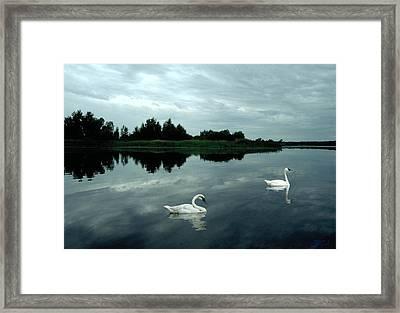 Point Serenity Framed Print
