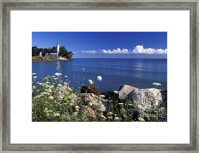 Pointe Aux Barques And Summer Wildflowers - Fs000823 Framed Print by Daniel Dempster