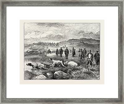 Pointer And Setter Grouse Trials At Rhiwlas Framed Print by Welsh School