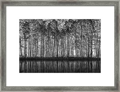 Pointillism Nature Framed Print