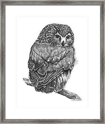 Pointillism Sawhet Owl Framed Print by Renee Forth-Fukumoto