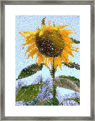 Pointillist Sunflower In Sun City Framed Print by Barbie Corbett-Newmin